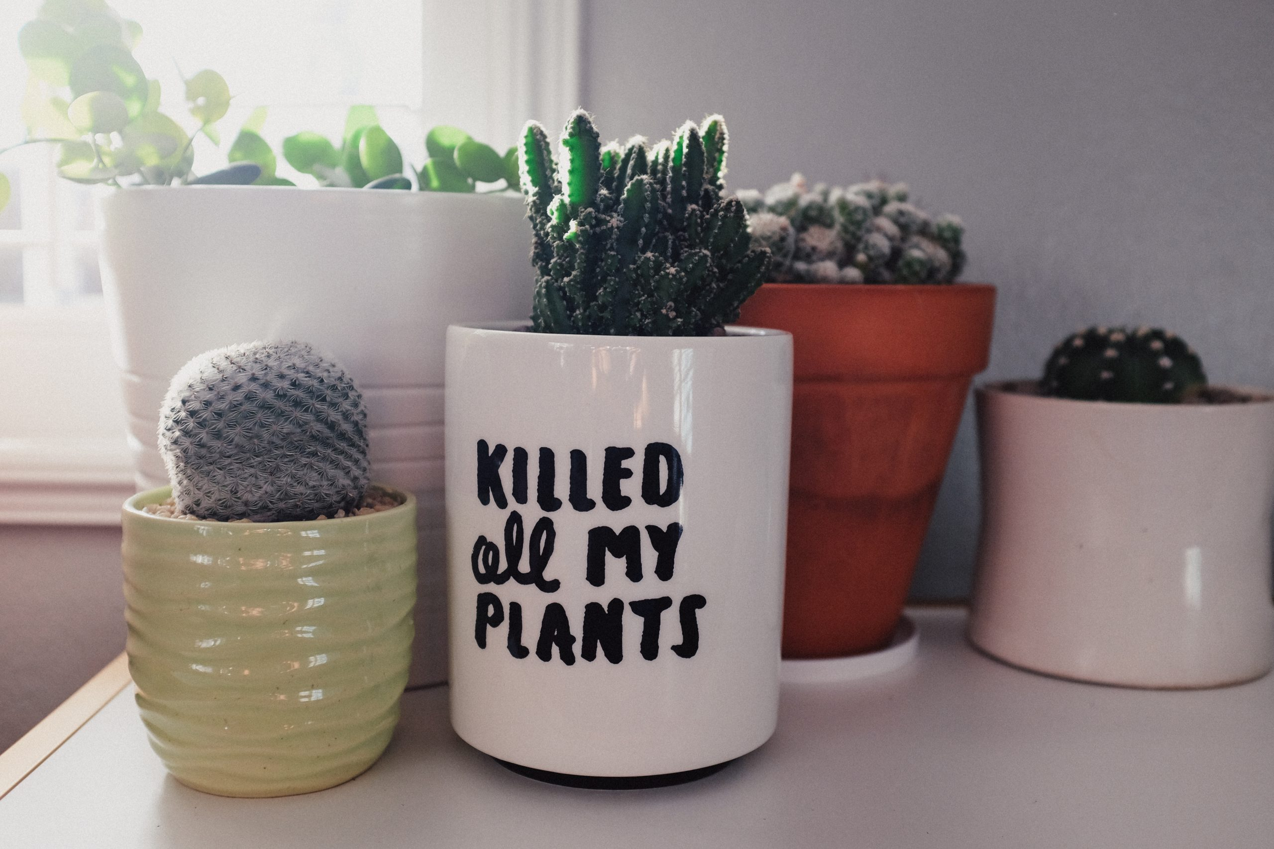 Kill it to grow it